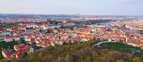 Photos gratuites de bâtiments, cathédrale, château, fleuve
