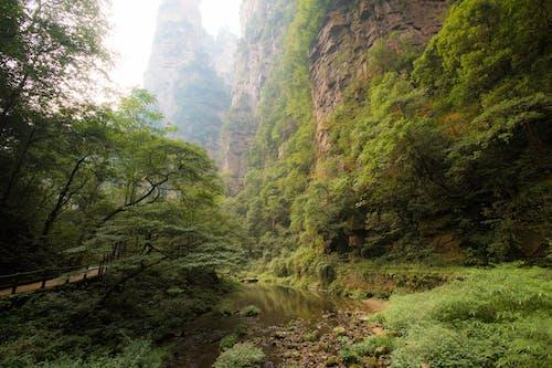 Free stock photo of china, mountain, nature
