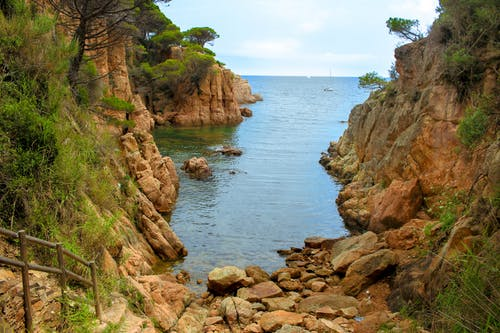 Free stock photo of beach, nature, nature photography