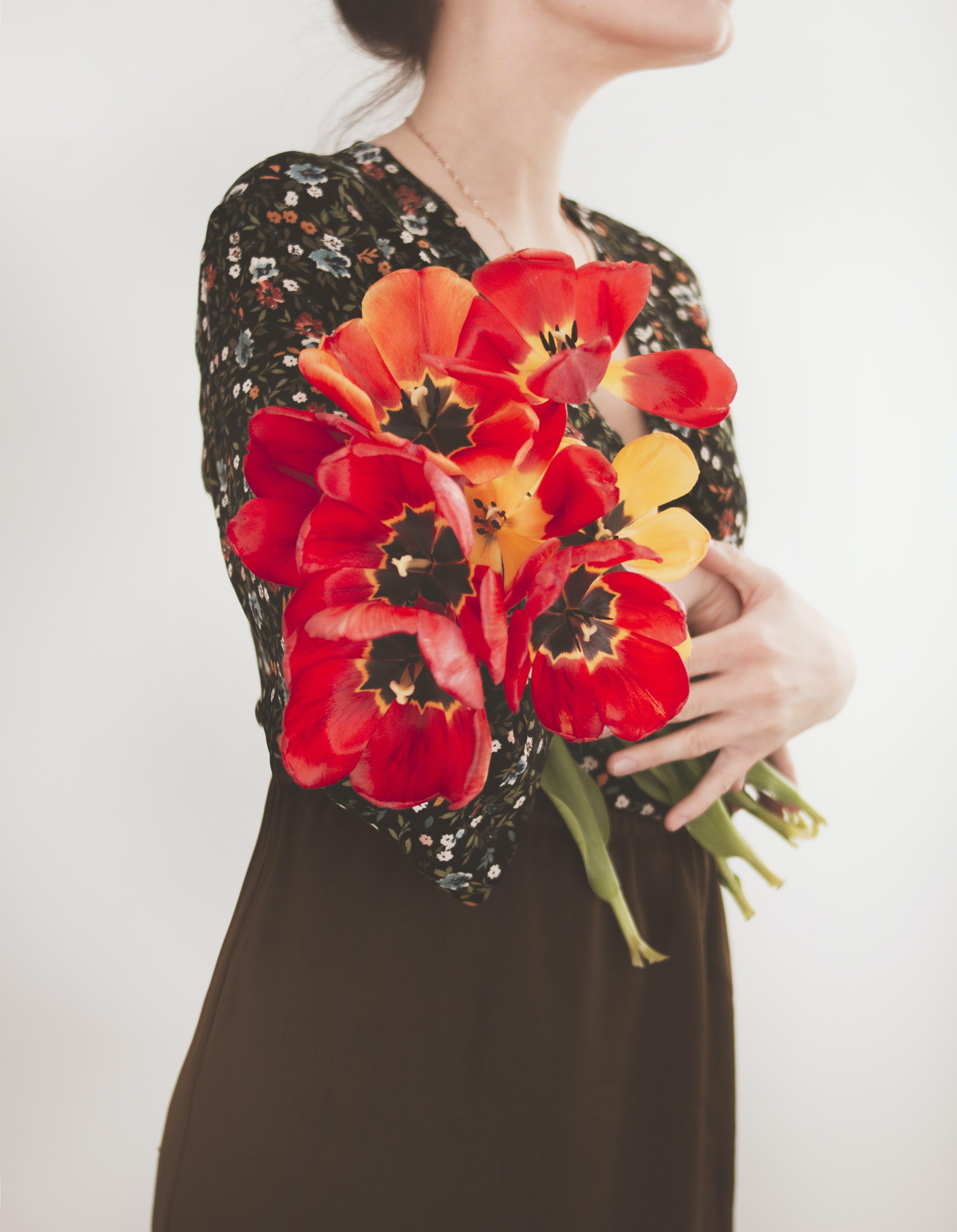 Základová fotografie zdarma na téma aranžování květin, červené tulipány, dekorace, flóra