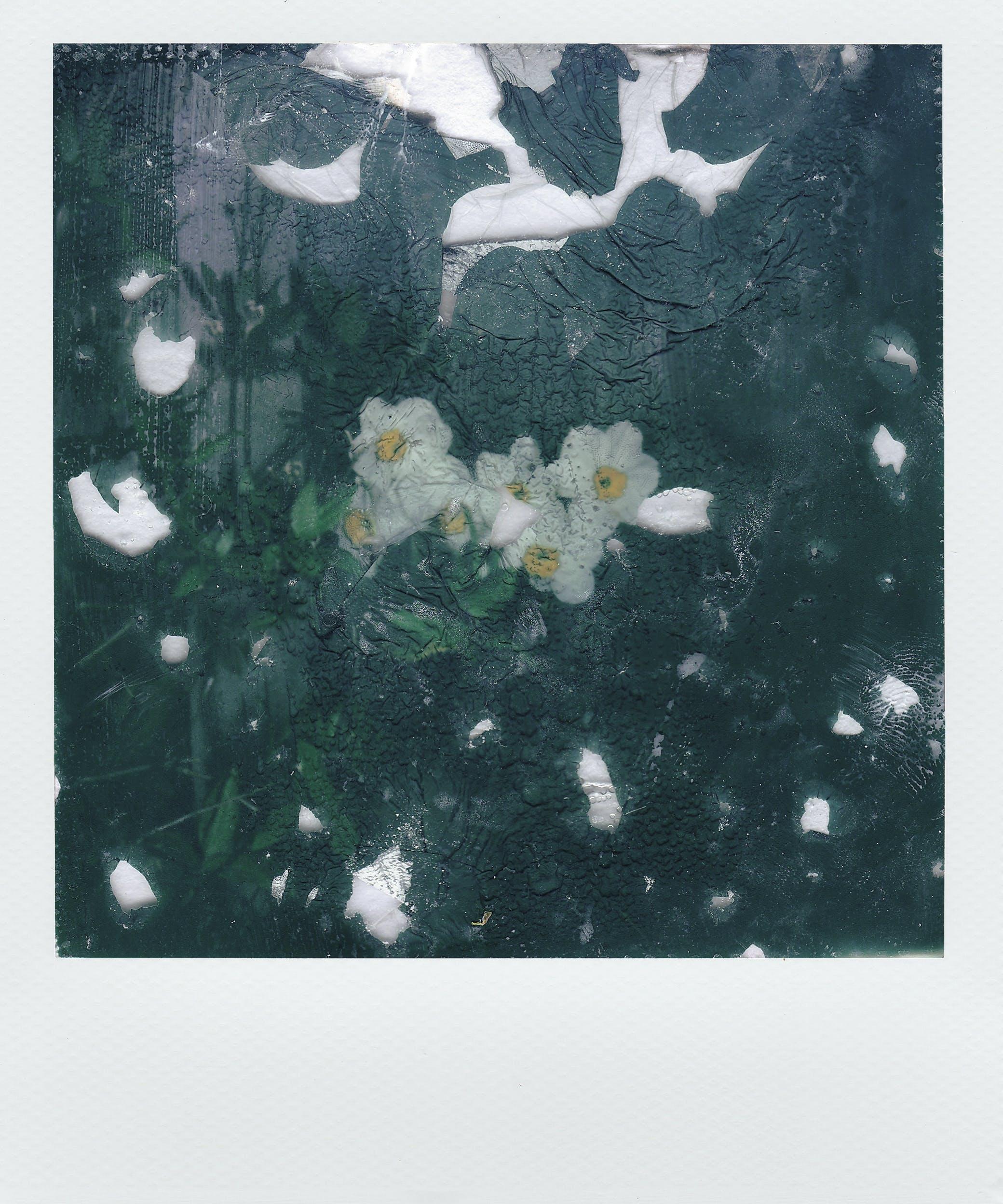 Základová fotografie zdarma na téma abstraktní, barva, dekorace, design