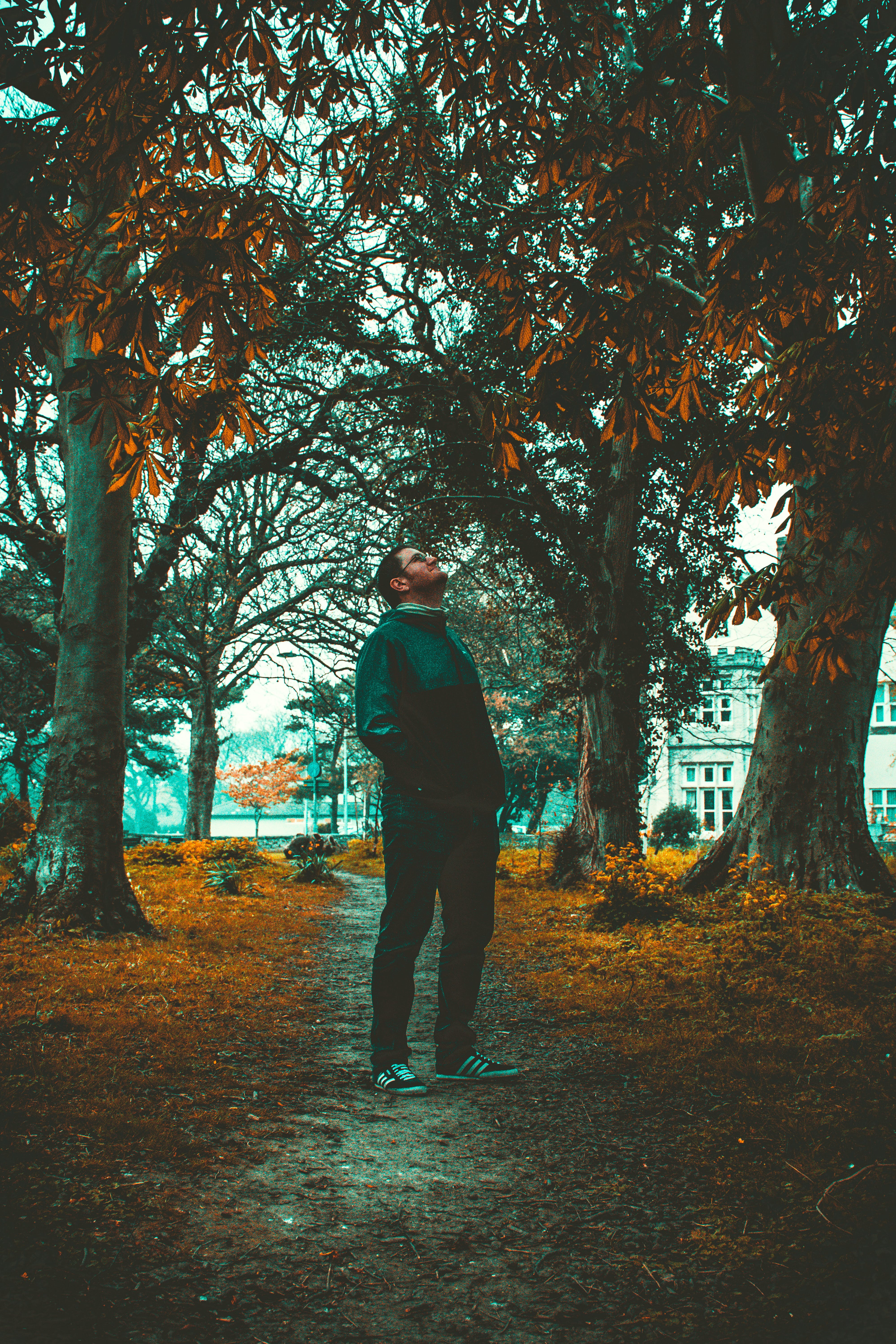Man Standing Beside Trees