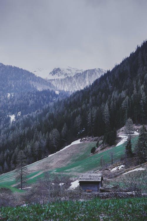 4k tapeta, alpský, cestování