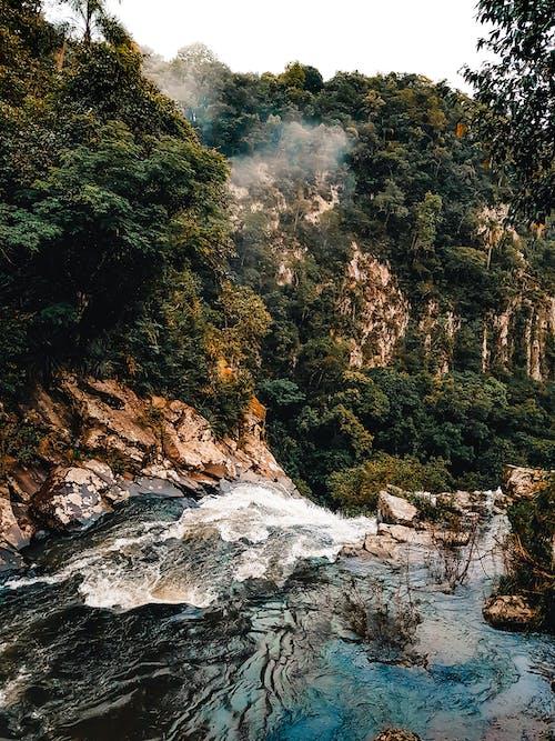 Gratis lagerfoto af bjerg, flod, landskab, malerisk