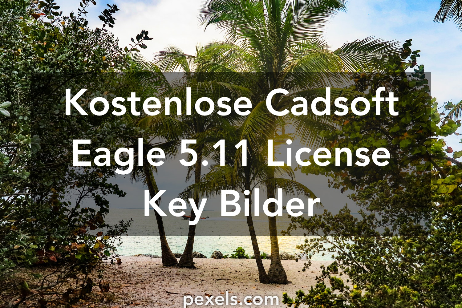Cadsoft Eagle 5 11 License Key Fotos · Pexels · Kostenlose