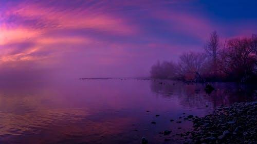 Fotobanka sbezplatnými fotkami na tému rieka, skoré ráno zavčasu ráno, zahmlený
