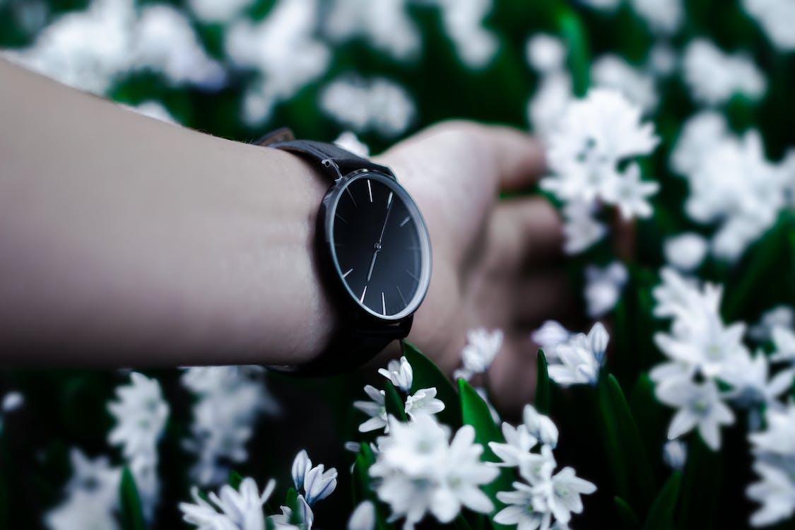 Analog Watch 美國手錶品牌, 人, 公園
