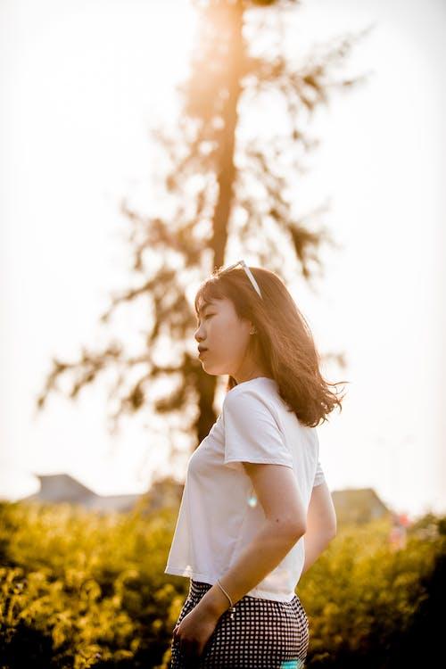 Fotobanka sbezplatnými fotkami na tému #vietnamese, lúč slnečného svitu, na zvislo, pláž