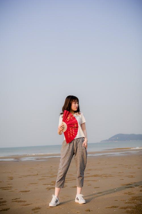 #vietnamese, 一縷陽光, 海灘, 纵向 的 免费素材照片
