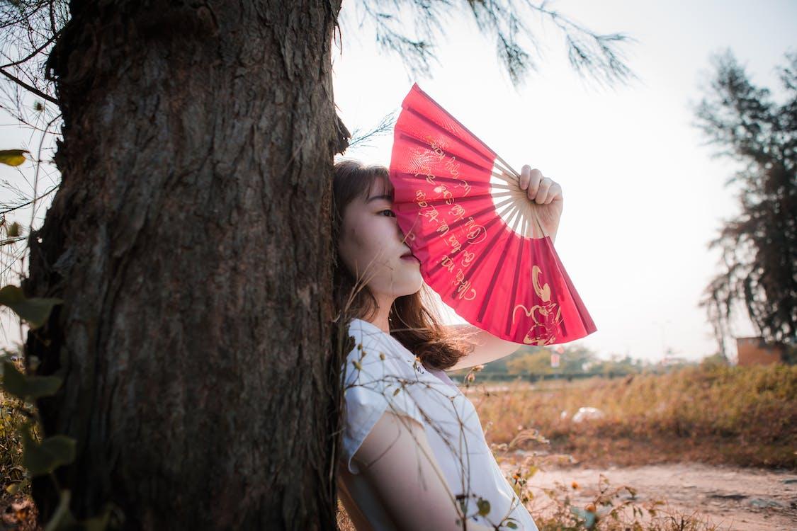 #vietnamese, lúč slnečného svitu, lúč slnka