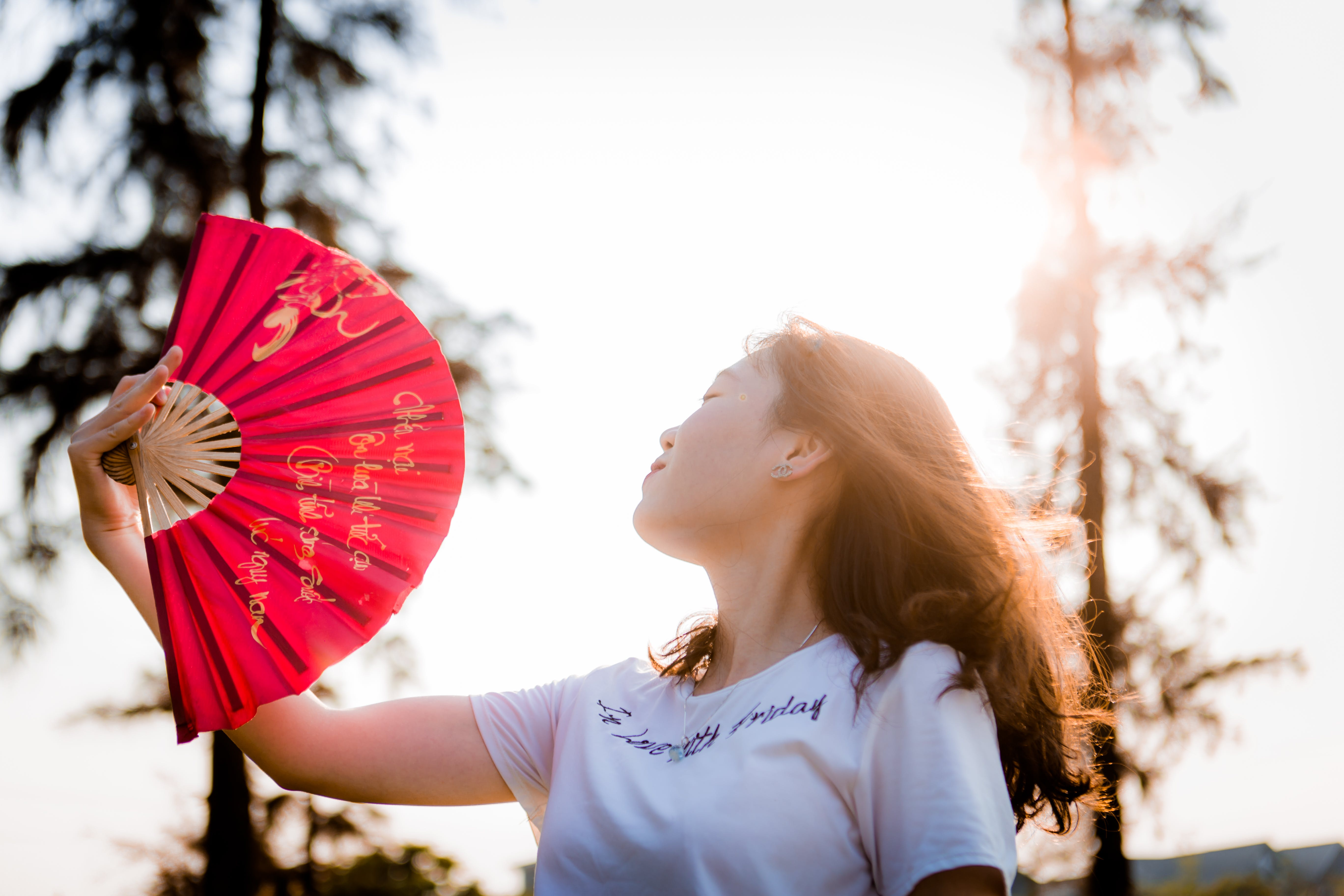 Close-up Photo of Woman Holding Red Hand Fan
