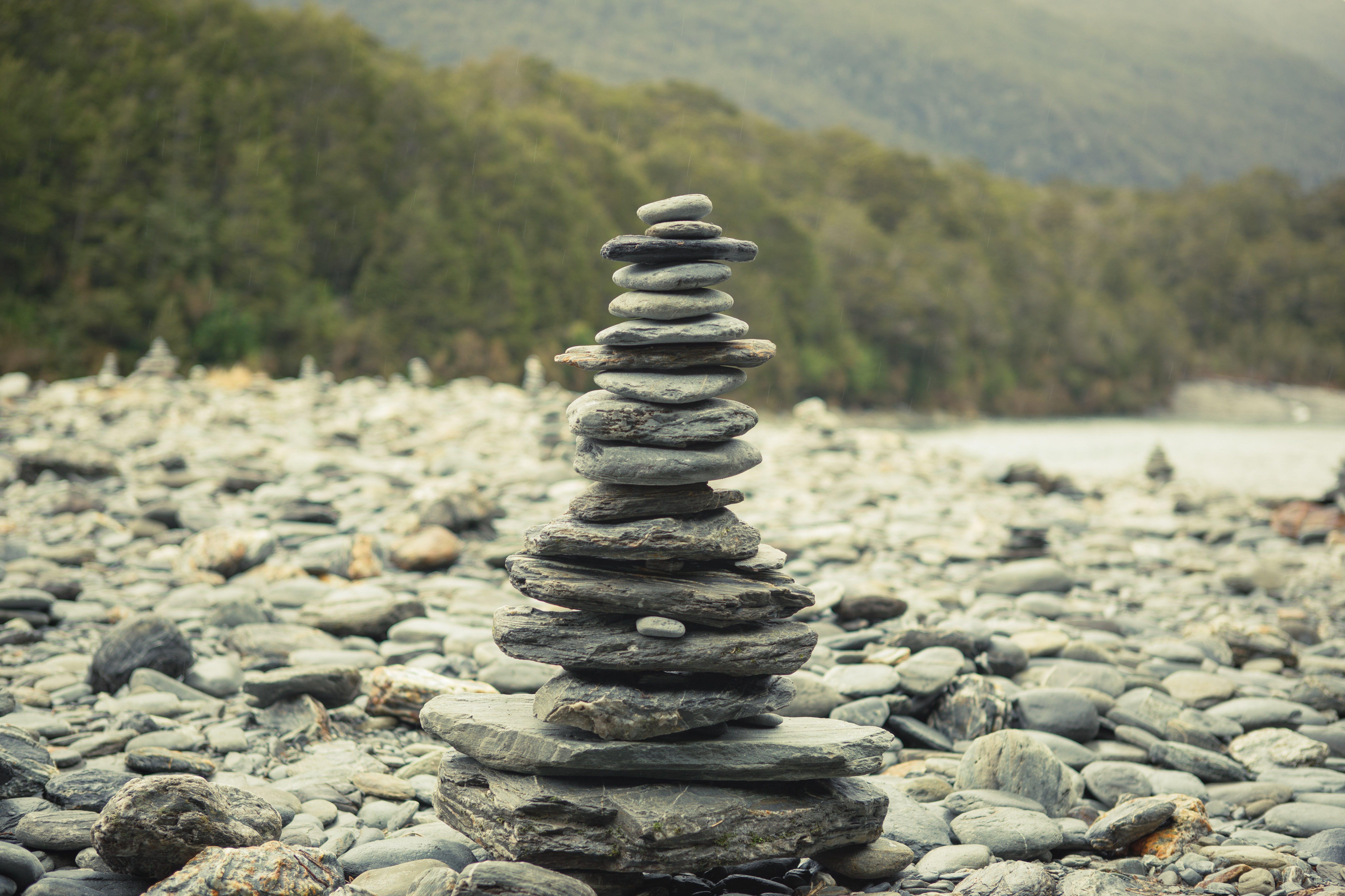 Kostnadsfri bild av grön, landskap, Nya Zeeland, ricver