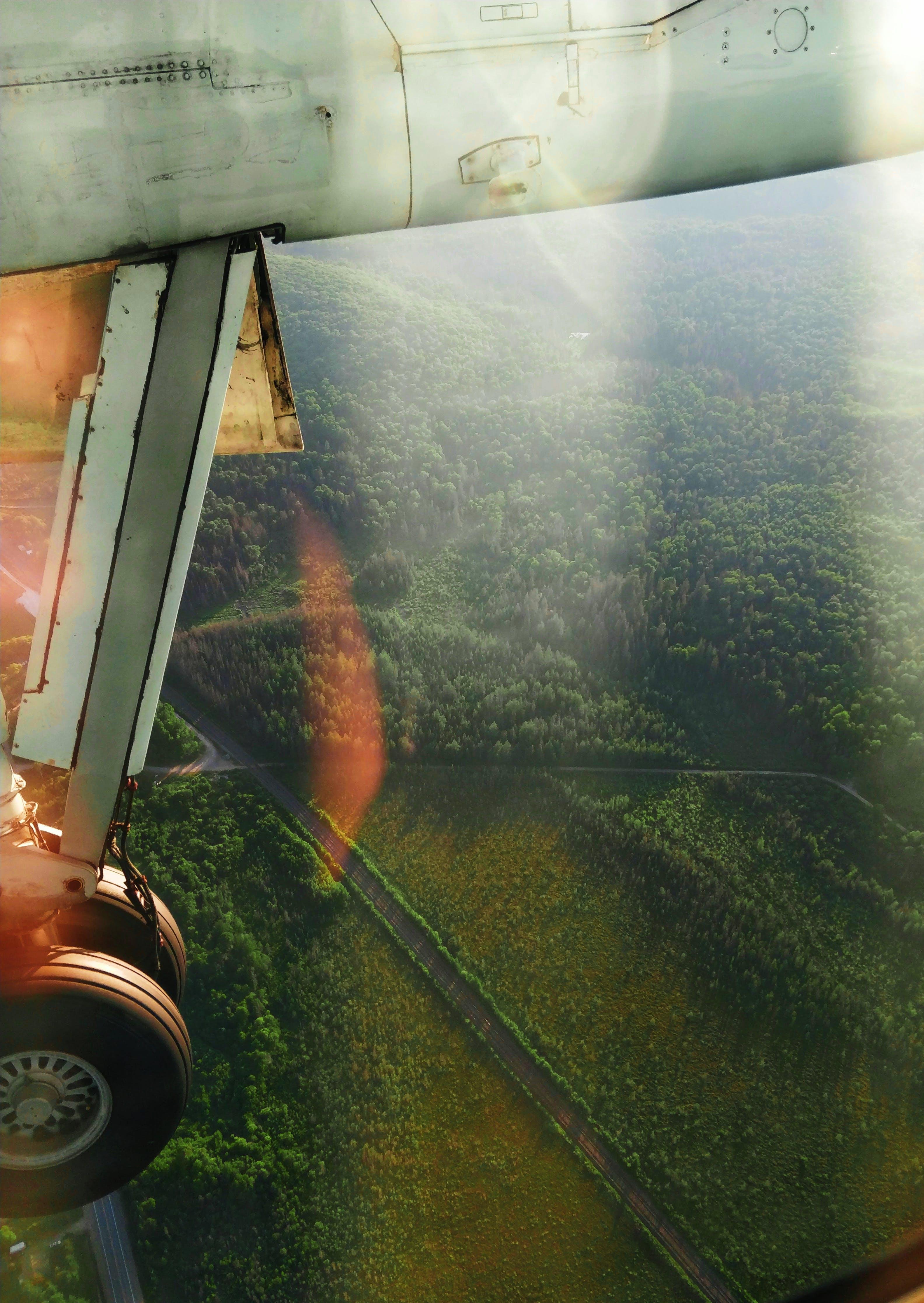 Gratis lagerfoto af bane, dagslys, flyrejse, flyve