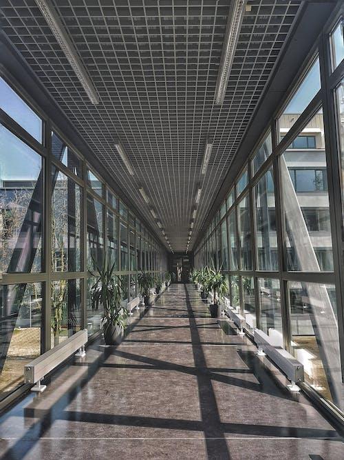 Darmowe zdjęcie z galerii z budynek, nowoczesna architektura, połączony, przejście