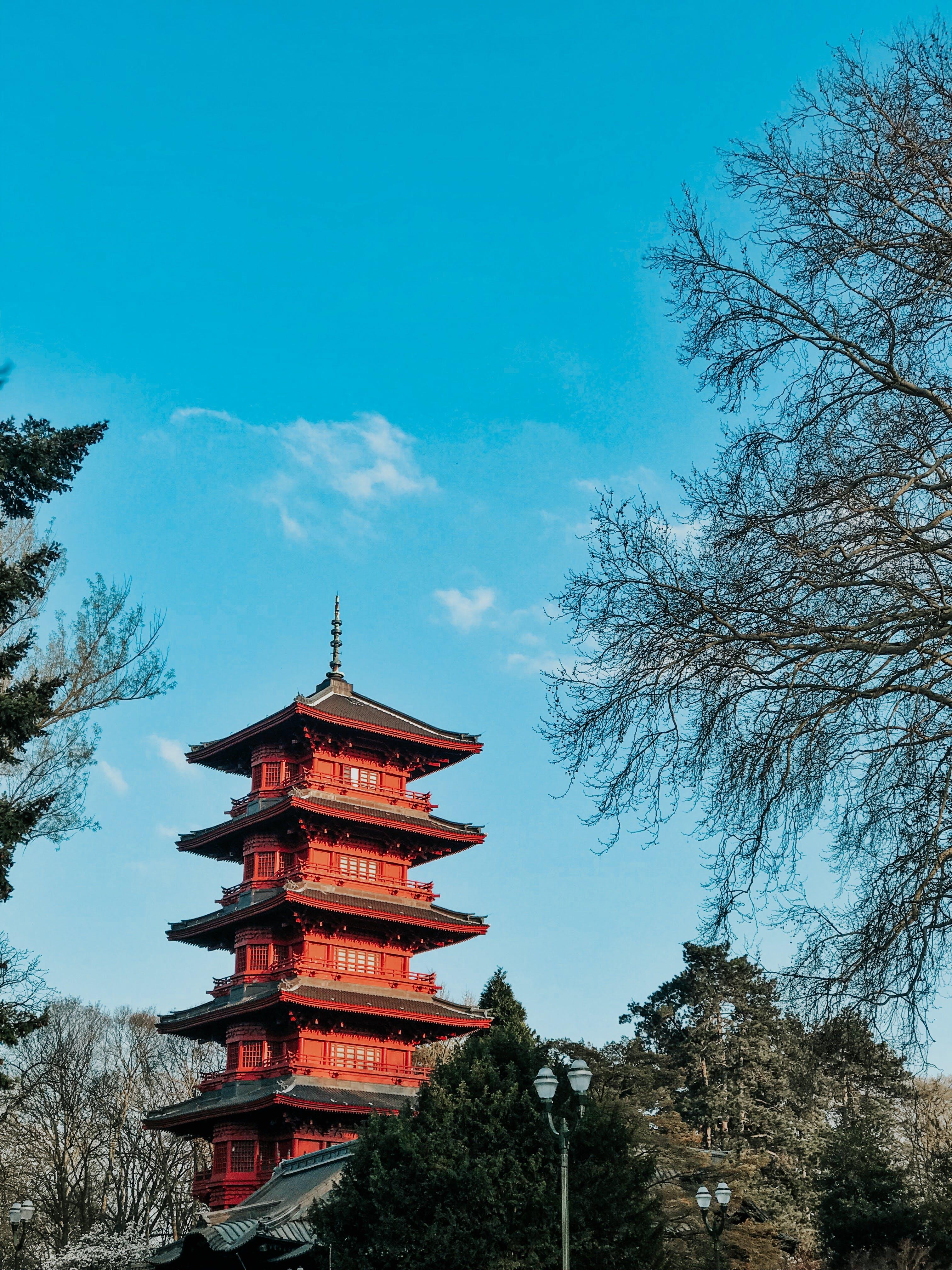 Foto d'estoc gratuïta de a l'aire lliure, antic, arbres, arquitectura