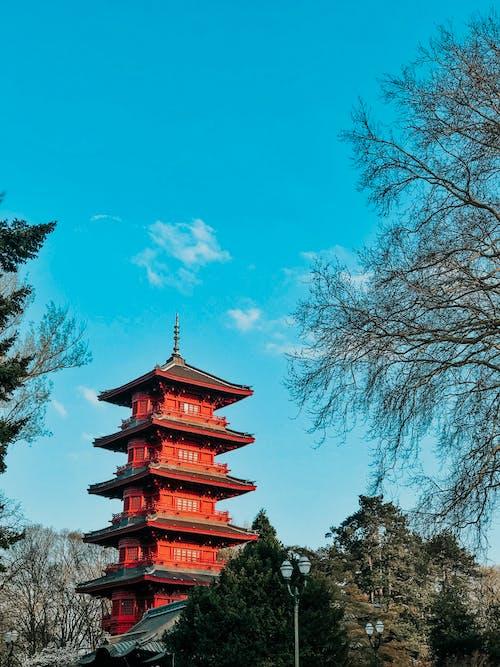 Бесплатное стоковое фото с Азиатская архитектура, архитектура, деревья, дневное время