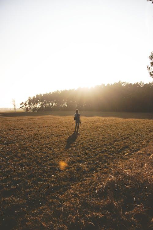 Ingyenes stockfotó árnyékok, ég, emberek, erdő témában