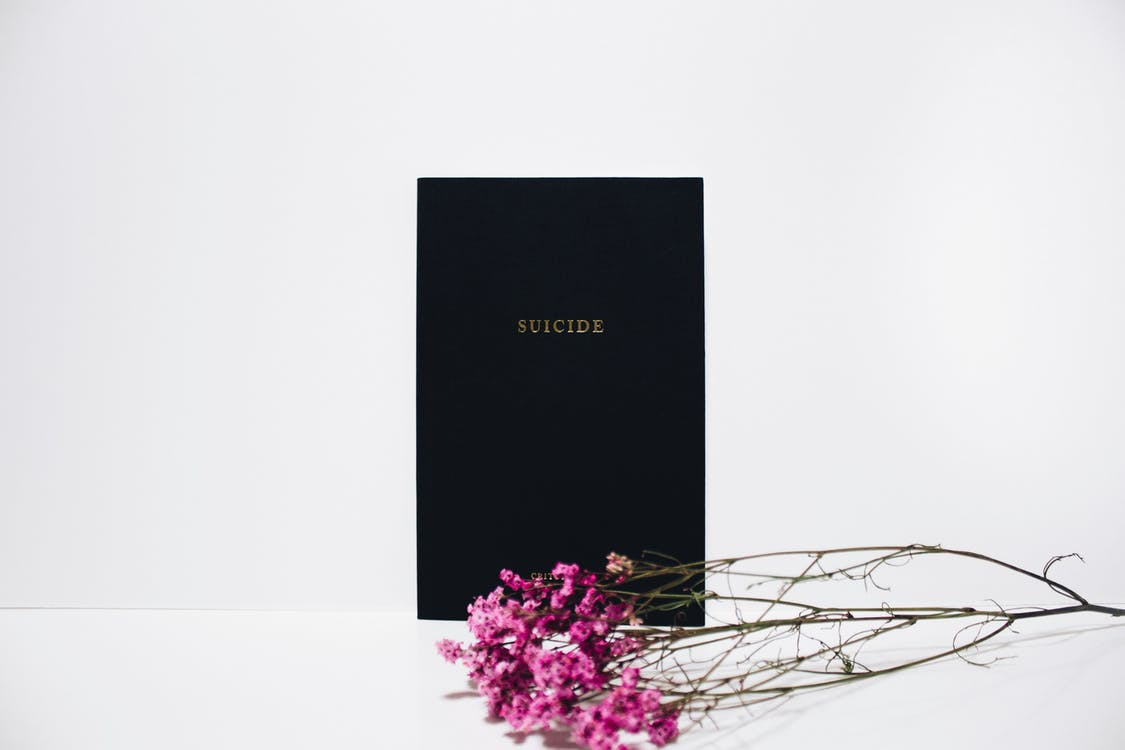 Purple-petaled Flowers Near Black Book