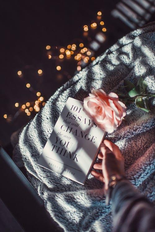 Gratis lagerfoto af blomst, bog, flora, gribe