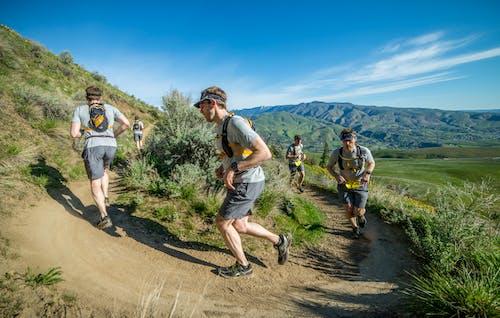 Fotobanka sbezplatnými fotkami na tému bežec, trailrunning, zložený