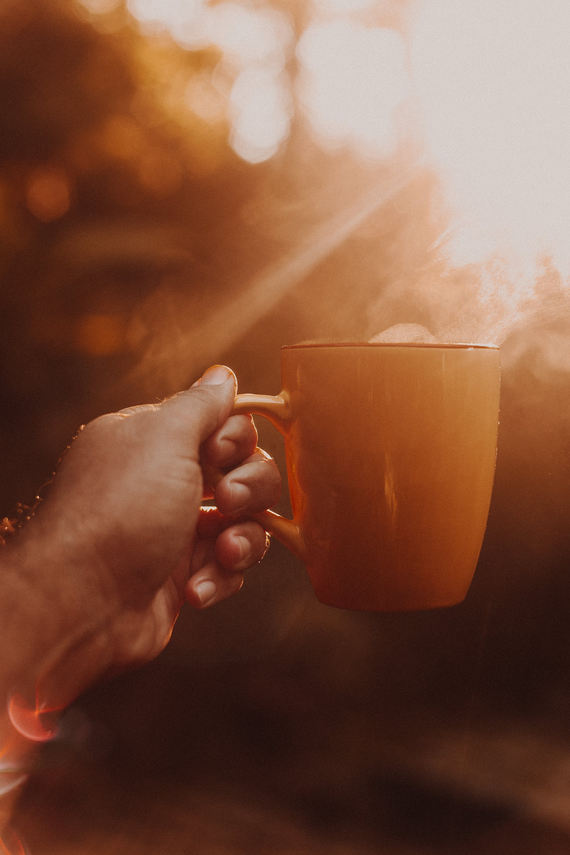 Ảnh lưu trữ miễn phí về ánh nắng mặt trời, Bo mạch, cà phê, cà phê cappuccino