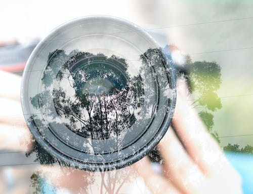 Free stock photo of camera, multiple exposure, trees