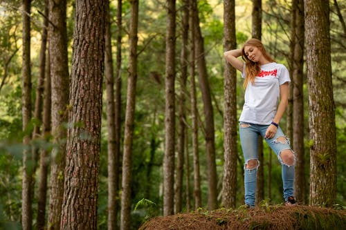 Woman Wearing White Shirt Taking Pose Near Brown Trees