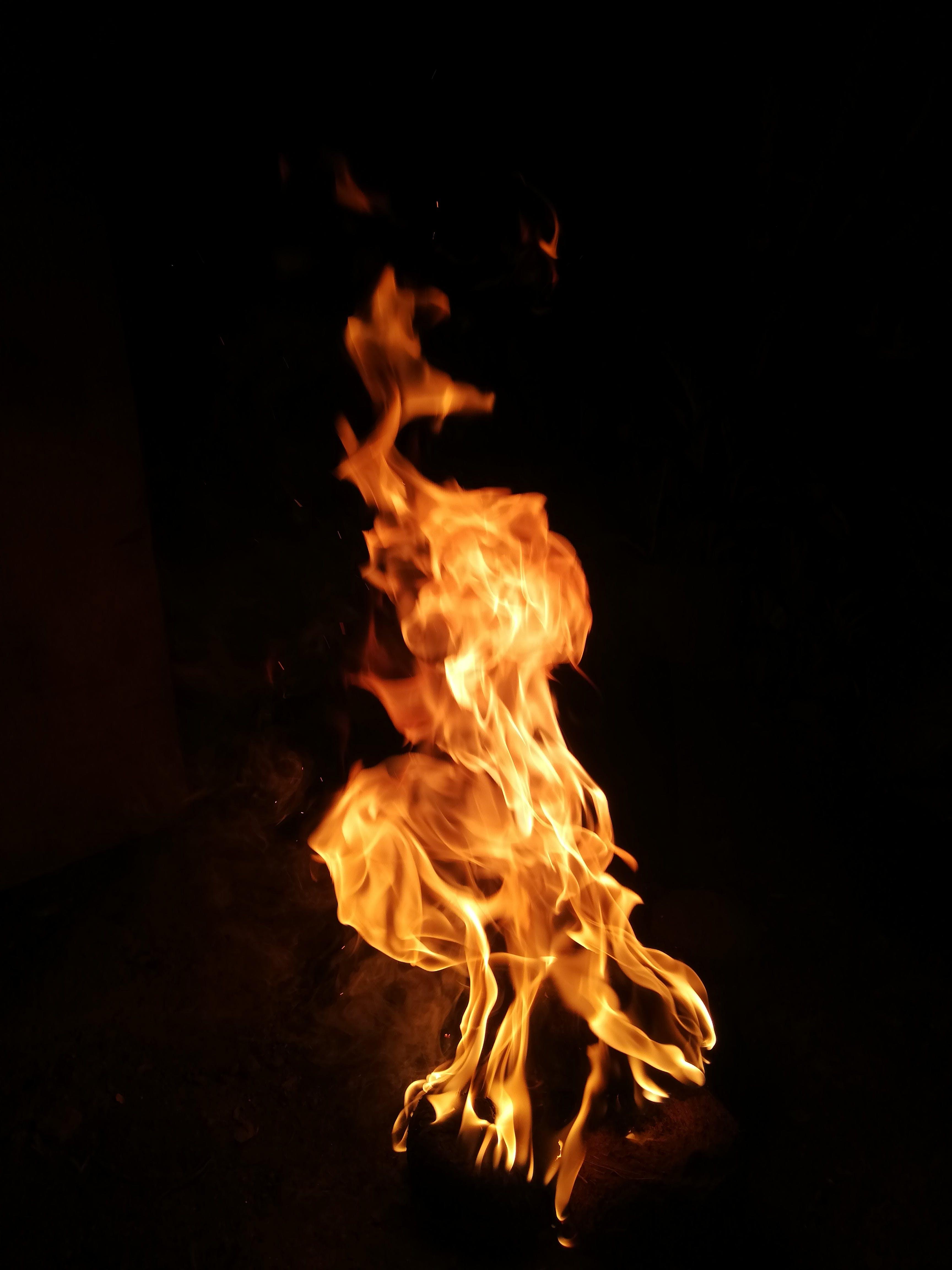 Foto d'estoc gratuïta de atractiu, calor, flama, fogata