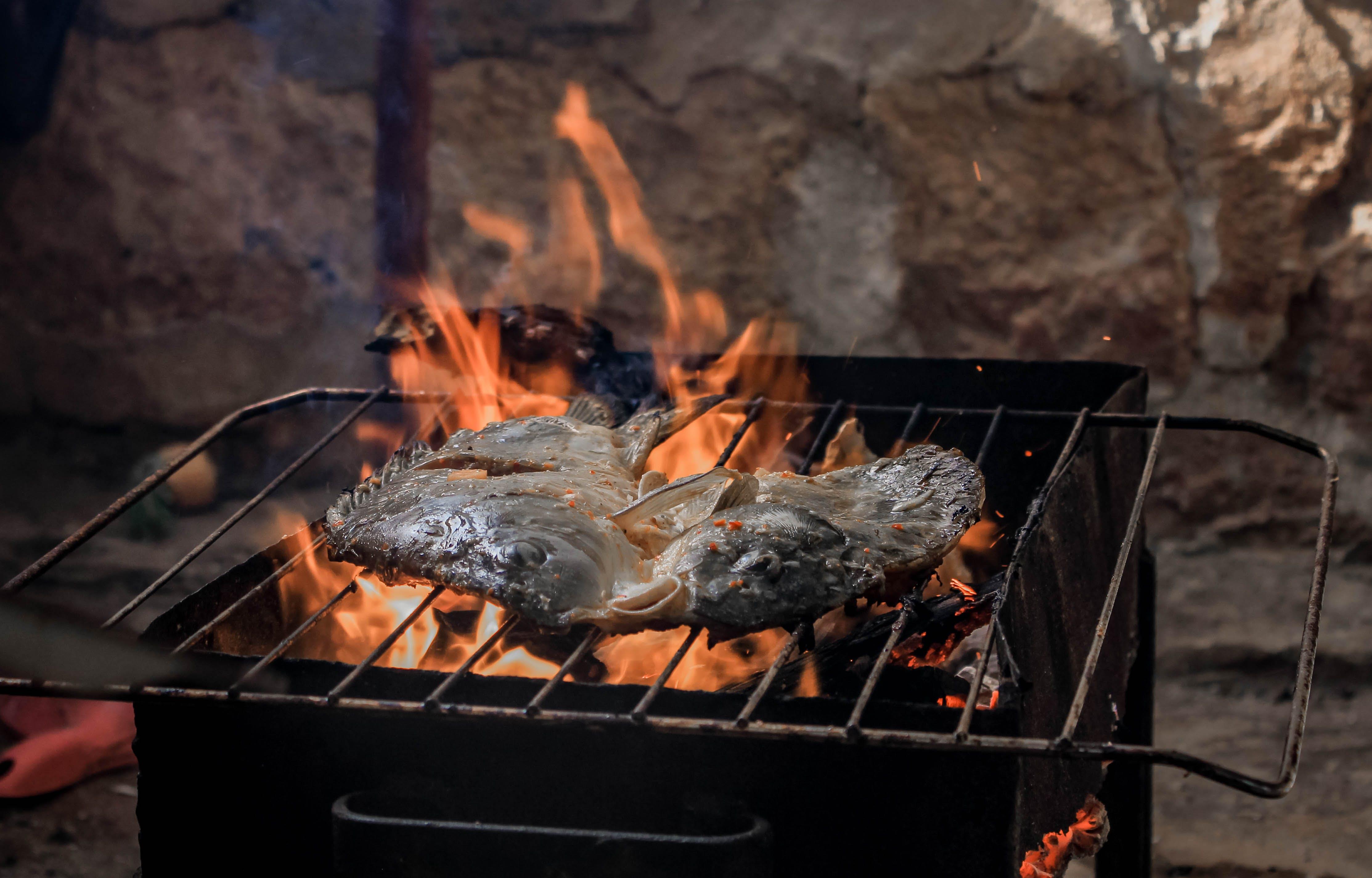 おいしい, たき火, グリル, バーベキューの無料の写真素材