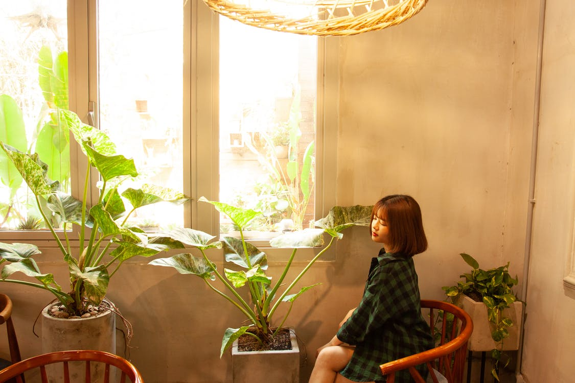 Photo of Woman Sitting on Chair Next to House Plants