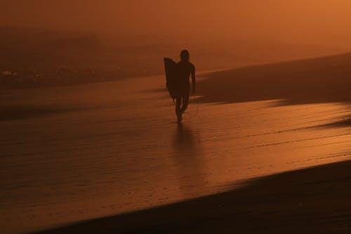 Free stock photo of backlight, beach, nature, sunset
