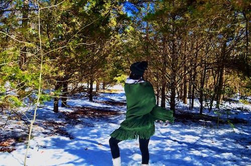 Gratis stockfoto met besneeuwd, sneeuw, winter, winter achtergrond