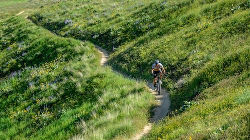 Fotobanka sbezplatnými fotkami na tému bicyklovanie, cestička, zelená