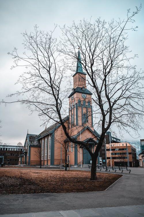 Foto profissional grátis de arquitetura, árvore, capela, construção