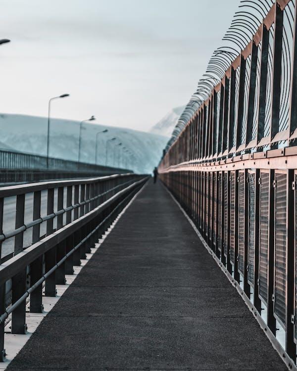 arkitektur, bro, dagsljus
