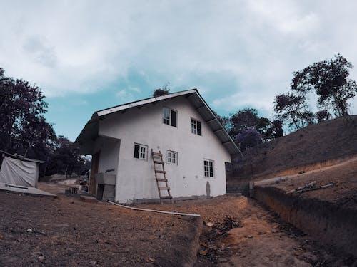ev, mimari, Panama, yuva içeren Ücretsiz stok fotoğraf