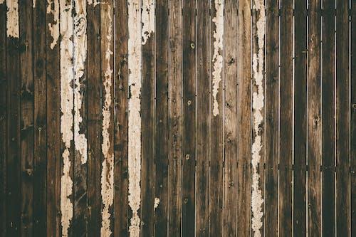 Foto profissional grátis de cerca, madeira, madeira de lei, superfície