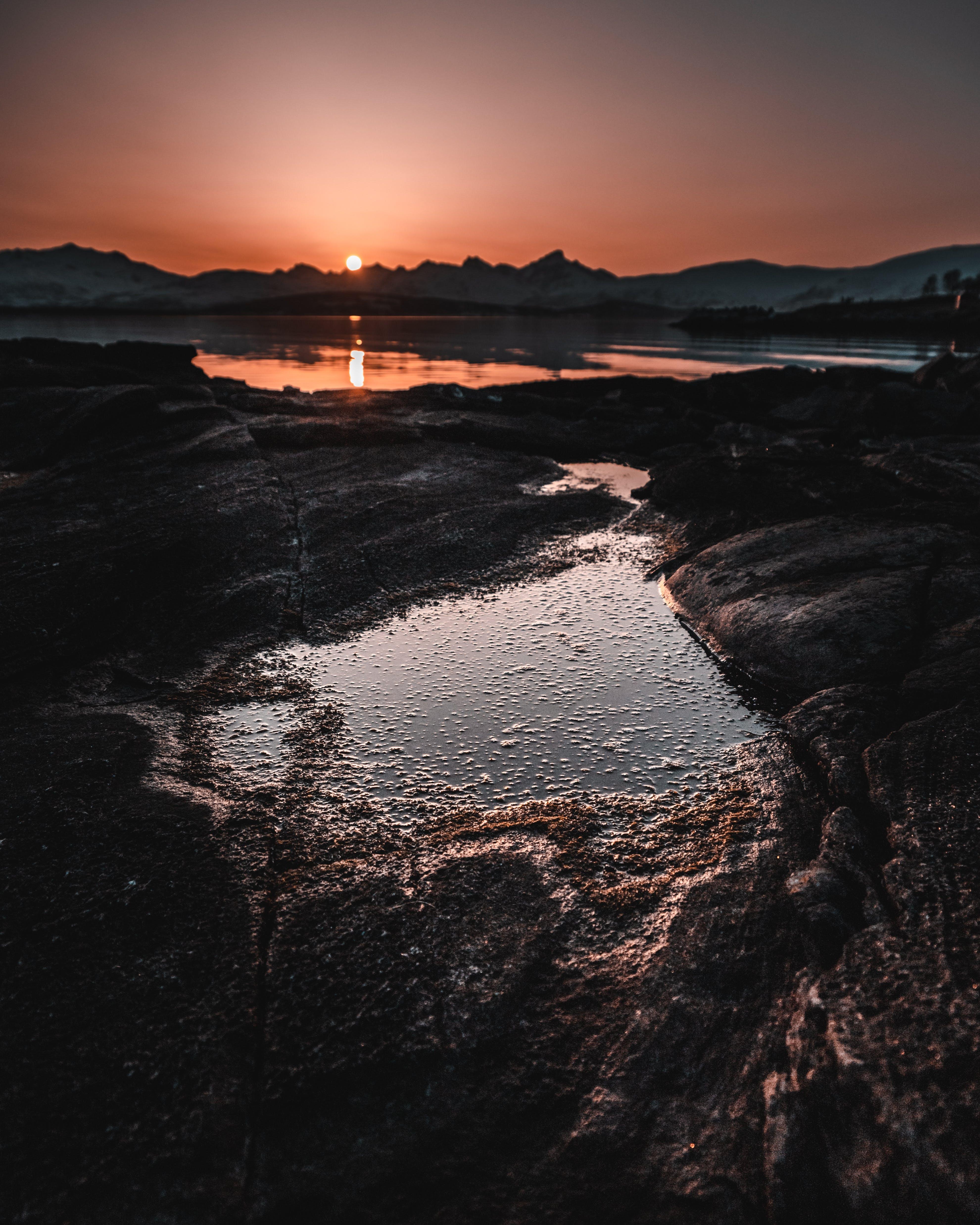 Foto stok gratis air, alam, backlit, bayangan hitam