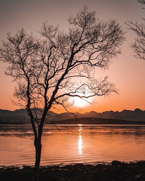 Fotobanka sbezplatnými fotkami na tému dlhá expozícia, horizont, jazero, krajina