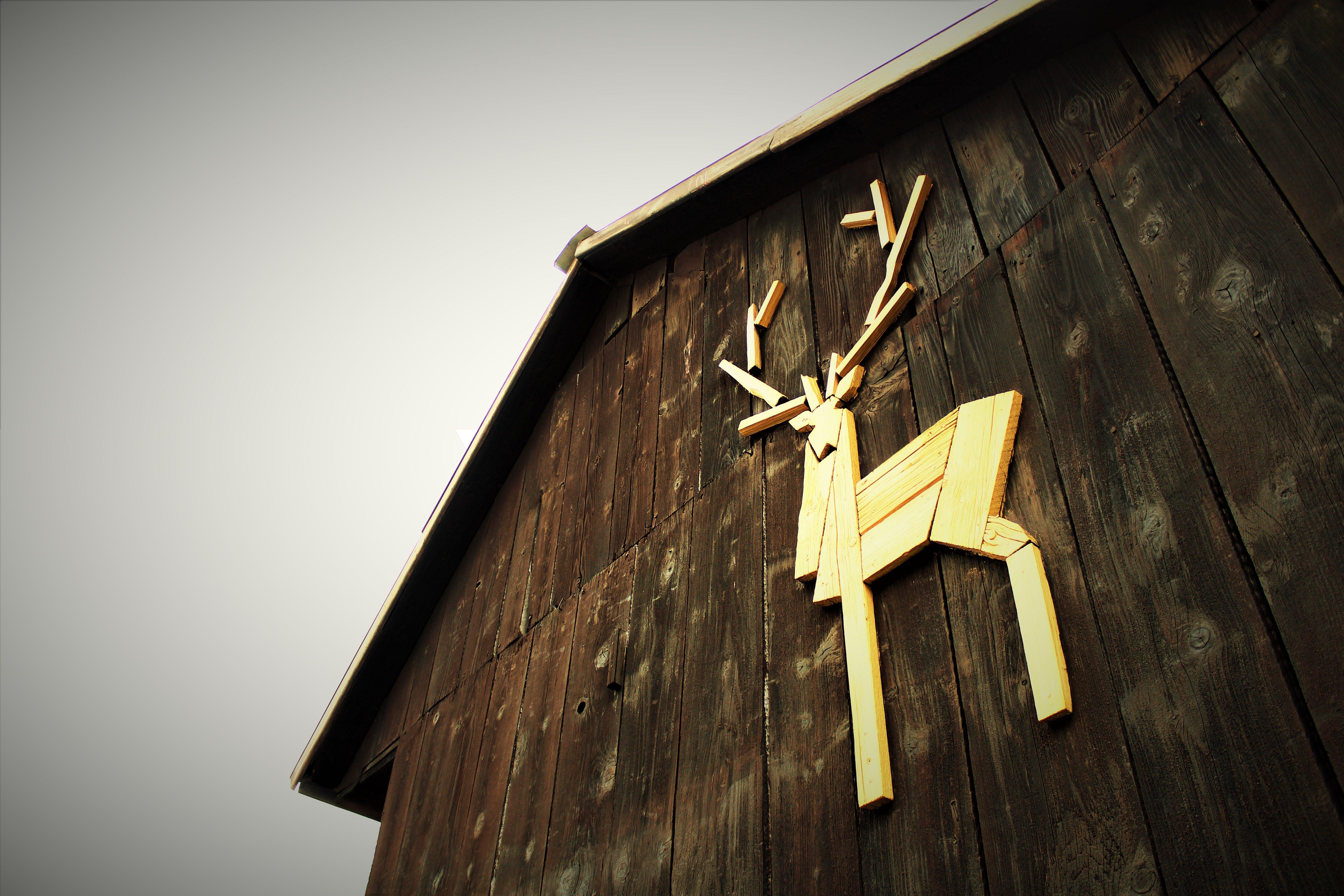 Ảnh lưu trữ miễn phí về ảnh cổ điển, bề mặt gỗ, cabin gỗ, cấu trúc bằng gỗ