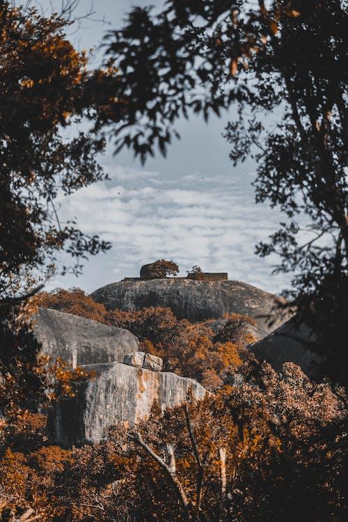 原本, 天性, 季節, 岩石 的 免費圖庫相片
