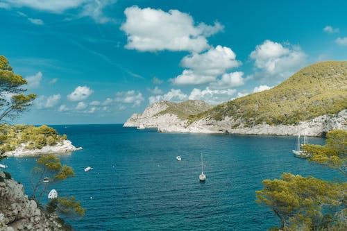Immagine gratuita di acqua, azzurro, baia, barche a vela