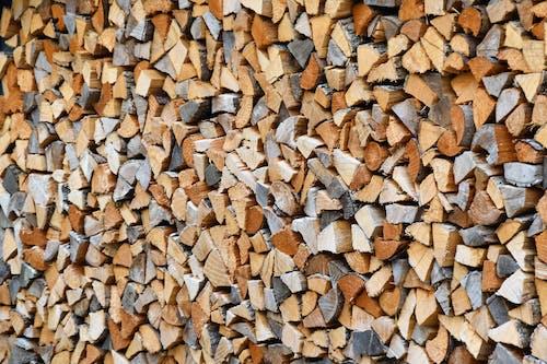 Fotobanka sbezplatnými fotkami na tému drevo na oheň, klát, kopa dreva, les