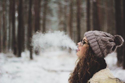 Ingyenes stockfotó barna, cigaretta, erdő, fák témában