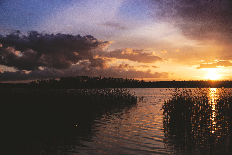 Gratis lagerfoto af flod, malerisk, morgengry, natur