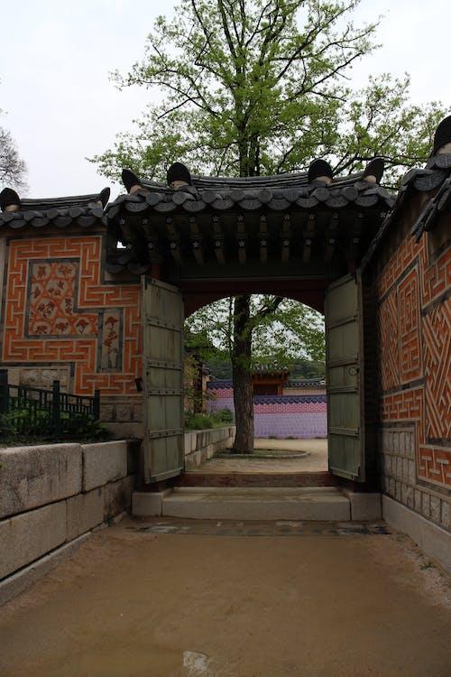 Photos gratuites de arbre, asie, corée, gyeongbokgung