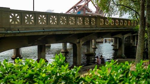 橋, 河 的 免费素材照片