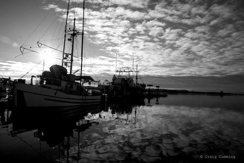 Foto d'estoc gratuïta de b/n, barques de pesca, port