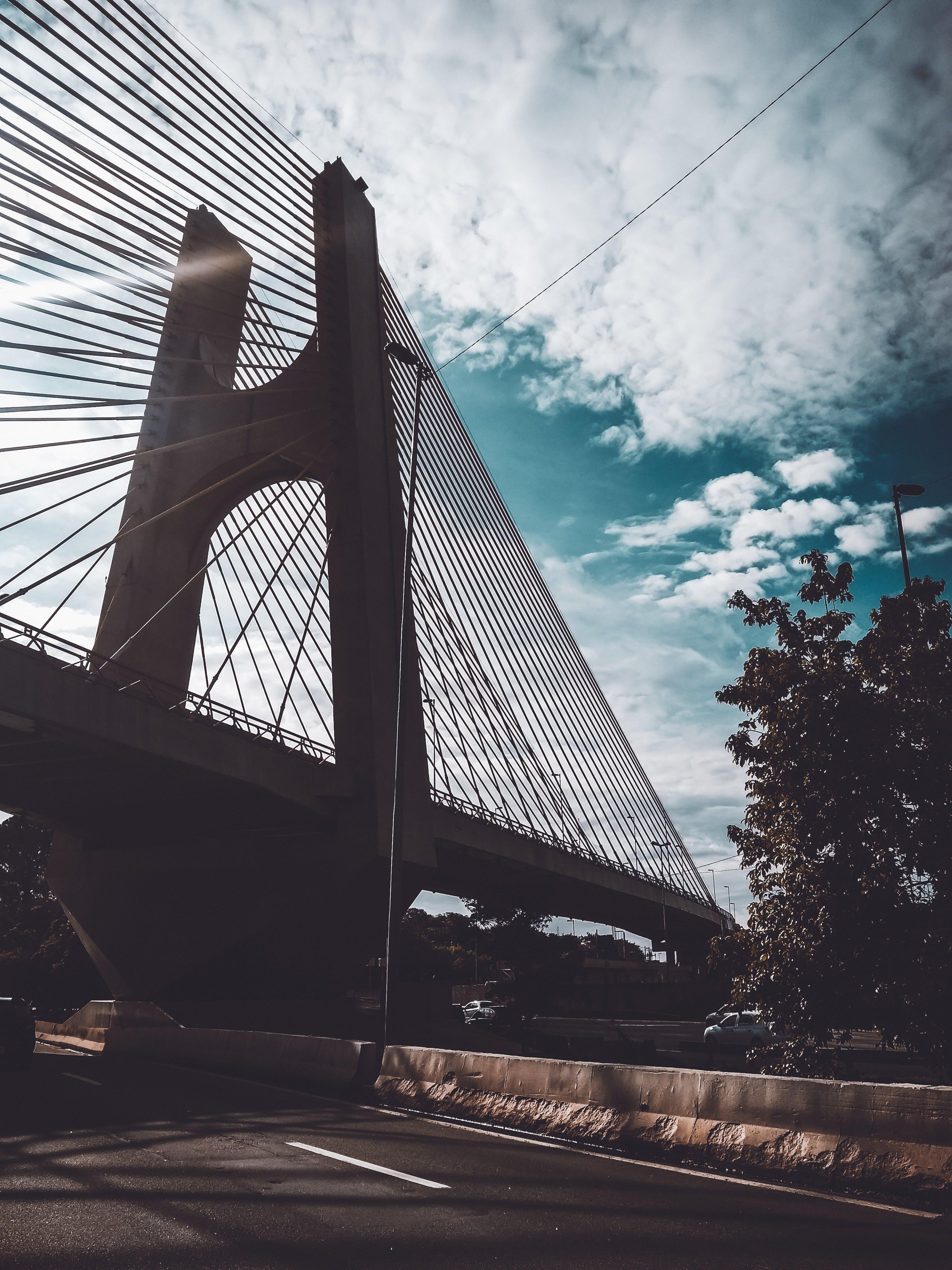 건축, 다리, 도로, 도시의 무료 스톡 사진