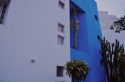 Gratis stockfoto met architect, architectonisch, architectonische details, architectueel design